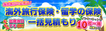 海外旅行保険・留学の保険.jpg